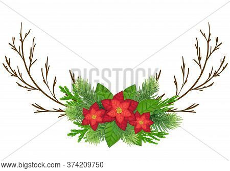 Christmas Poinsettia Flower Realistic Vector Illustration. Xmas Decorative Plants. Holly Twigs, Red