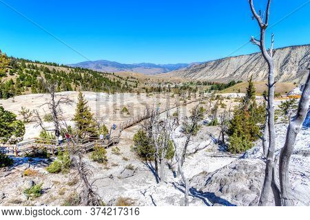 Wyoming, Usa - Aug. 28, 2019: Visitors Exploring The Lower Terraces Of Mammoth Hot Springs On The Bo
