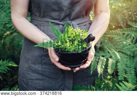 Woman Holding In Her Hands A Mortar Of Medicinal Herbs. Herbalist Woman Gathering Healing Plants Out