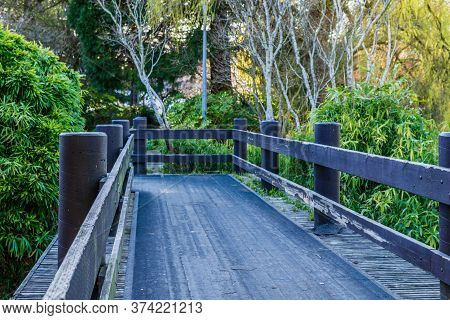 Wooden Pathway Bridge In City Park Summer Day.