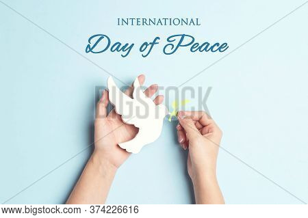 World Peace Day Greeting Card. Female Hands Hold Dove Of Peace With Olive Branch On A Blue Backgroun