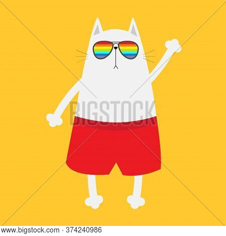 White Cat Wearing Sunglasses Eyeglasses. Rainbow Color Lenses. Lgbt Sign Symbol. Hello Summer. Cute