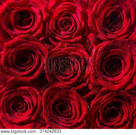 Bouquet Of Fresh Roses, Flower Bright Background. Red Rose Flower, Petals. Bouquet Of Flowers, Fresh