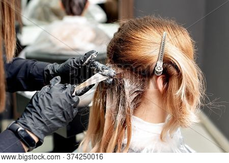 Hairdresser Hands Is Dyeing Hair Of Woman Wearing Black Gloves In Hair Salon. Coloring Hair.