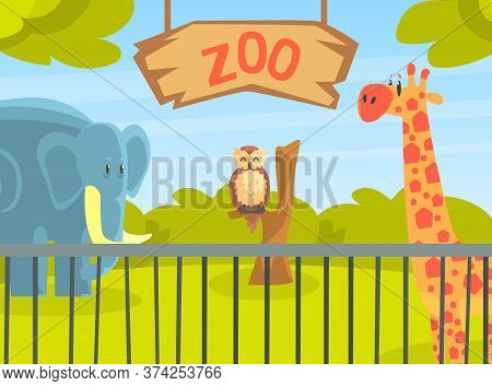 Zoo Park With Wild Animals, Natural African Landscape With Wild Giraffe, Elephant, Owl Animal Vector