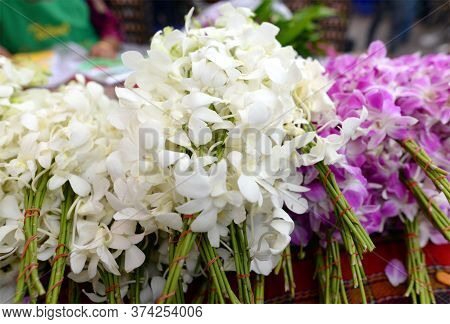 Fresh Orchids, Pink, White, Bundle For Sale In The Market Thailand.