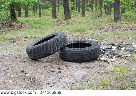 Dirty old rubber tires in forest