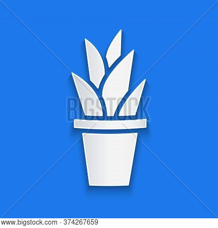 Paper Cut Plant In Pot Icon Isolated On Blue Background. Plant Growing In A Pot. Potted Plant Sign.