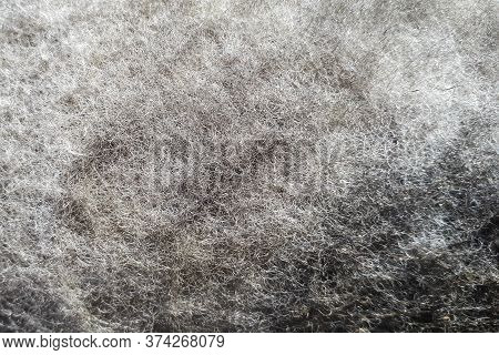 Detailed Fragment Of Dirty Air Car Filter Surface