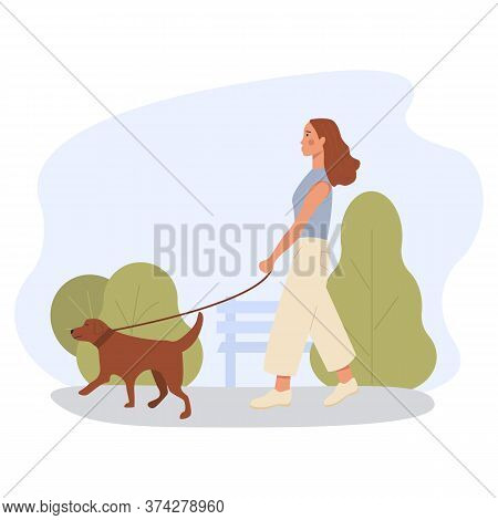 A Girl Alone Walking Dog Outdoor In Green Park. Banner For Dog Walker Company. Pet Sitting. Labrador