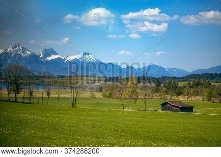 Mountain Green Valley Landscape. Beautiful Mountain Green Valley Panorama. Mountain Meadow Flowers V