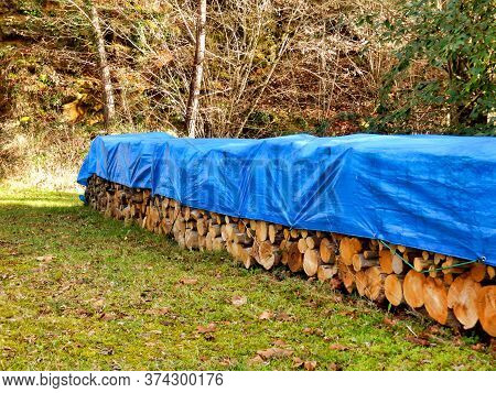 Pile Of Acacia, Chestnut And Oak Logs In A Woodland Clearing And Covered In Tarpaulin To Keep Them D