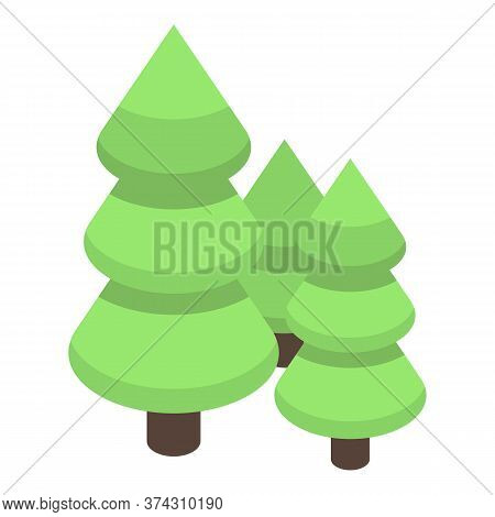Fir Tree Forest Icon. Isometric Of Fir Tree Forest Vector Icon For Web Design Isolated On White Back