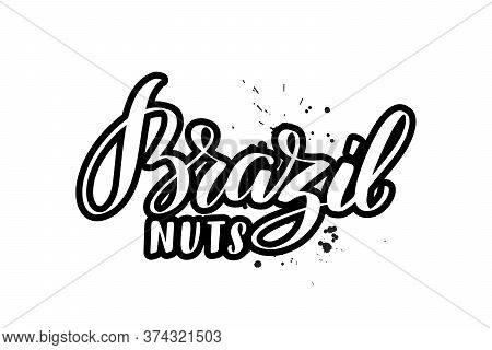 Vector Calligraphy Illustration Isolated On White Background