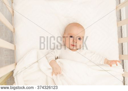 Sleeping Baby And His Toy In White Crib. Nursery Interior And Bedding For Kids. Cute Little Boy Napp