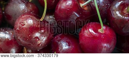 Closeup Of Ripe Bright Cherry With Water Drops On The Background Of Berries. Long Horizontal Macro B