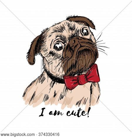 Print For T Shirt. Vector Hand Drawn Puppy Pug With A Red Bow. I Am Cute!