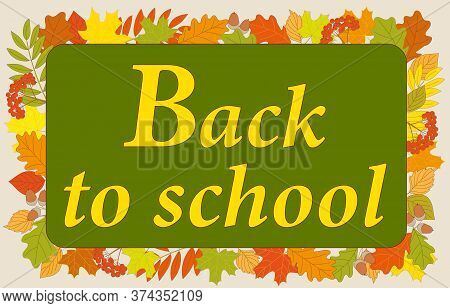 Slogan Back To School On The Green Chalkboard And Colorful Autumn Foliage Background. Vector Illustr