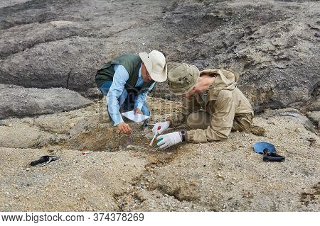 Two Paleontologists Extract Fossilized Bone From The Ground In The Desert