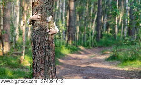 Close Up Of Woman Embracing/hugging Tree Trunk, Holding Wildflowers In Hands, Enjoys Life, Clean Fre