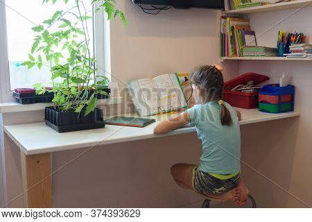 Girl Is Teaching At Home On A Textbook At The Desk