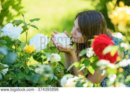 Young Girl Enjoys The Scent Of Roses In The Park
