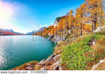 Picturesque Autumn Scene In Swiss Alps And Views Of Sils Lake (silsersee). Colorful Autumn Scene Of