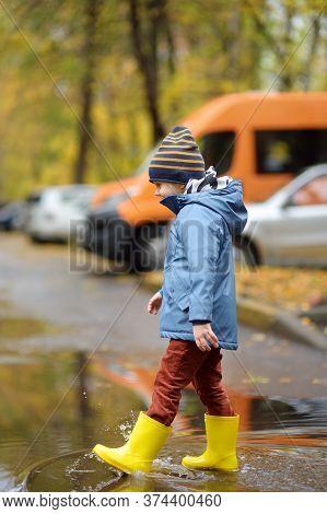 Preschooler Boy Walking In Autumn Park. Boy Is Measuring The Puddles And Having Fun. Outdoor Activit