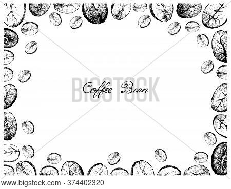 Illustration Frame Of Hand Drawn Sketch Of Assorted Roasted Coffee Beans Isolated On White Backgroun