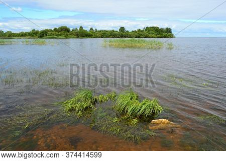 Transparent Water With A Visible Sandy Bottom, Small Stones And Green Algae At The Bottom Of The Res