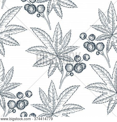 Vector Drawing Seamless Pattern With Castor Plant, Ricinus Plant , Hand Drawn Illustration