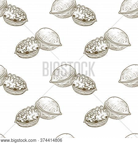 Vector Drawing Seamless Pattern With Walnut, Hand Drawn Illustration