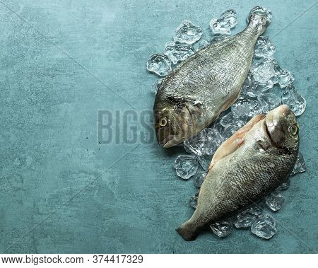 Organic Raw Gilt-head Bream Fish Or Royal Dorade On Ice Cubes. Copy Space For Text.
