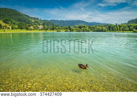 Natural Lake With A Pebble Beach In Moravia, Czech Republic, Europe.
