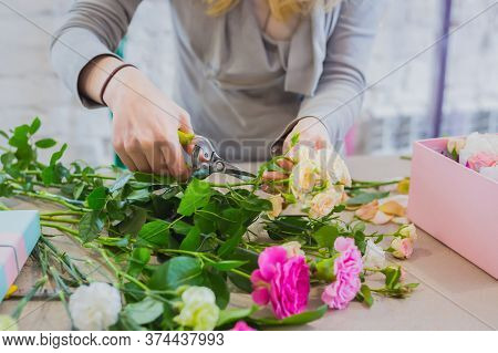 Professional Floral Artist, Florist Holding Cutter And Cutting Flower Stems In Bright Room Of Flower