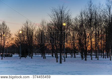 Park Of Saint-petersburg 300 Anniversary, Located On The Shore Of The Gulf Of Finland In The North-w