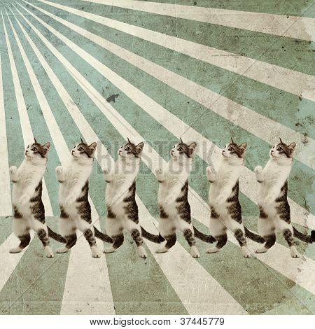 Dancing Cats Retro Poster