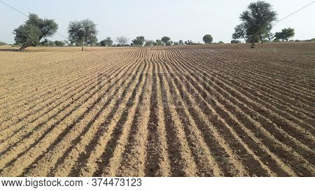 Cultivated Or Plowed Field Dry Land Background With No Plant Germinated