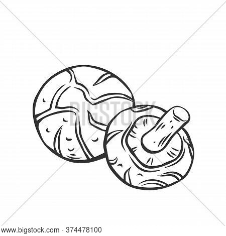 Edible Mushrooms Shiitake Outline Icon. Engraved Forest Plants, Natural Protein Food. Drawn Shiitake