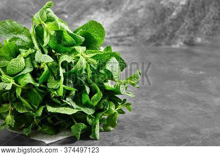 A Bunch Of Mint, Spearmint, Peppermint Tied With Twine On A Gray Background. Mint-flavored Leaves. M