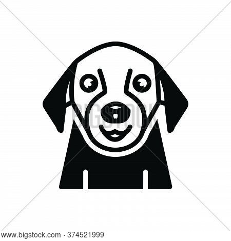 Black Solid Icon For Pet Tame Domestic Home-animal Dog Faithful Animal