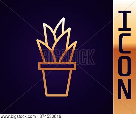 Gold Line Plant In Pot Icon Isolated On Black Background. Plant Growing In A Pot. Potted Plant Sign.