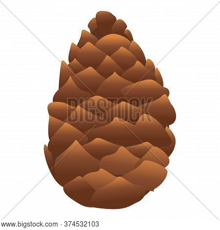 Botanical Pine Cone Icon. Cartoon Of Botanical Pine Cone Vector Icon For Web Design Isolated On Whit