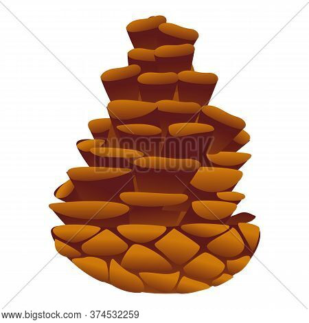 Conifer Pine Cone Icon. Cartoon Of Conifer Pine Cone Vector Icon For Web Design Isolated On White Ba