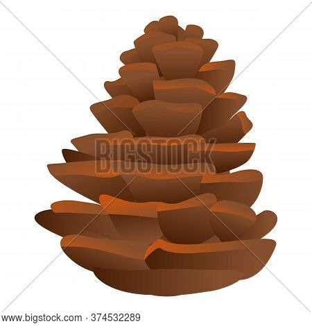 Firtree Pine Cone Icon. Cartoon Of Firtree Pine Cone Vector Icon For Web Design Isolated On White Ba