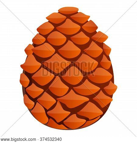 Spruce Pine Cone Icon. Cartoon Of Spruce Pine Cone Vector Icon For Web Design Isolated On White Back