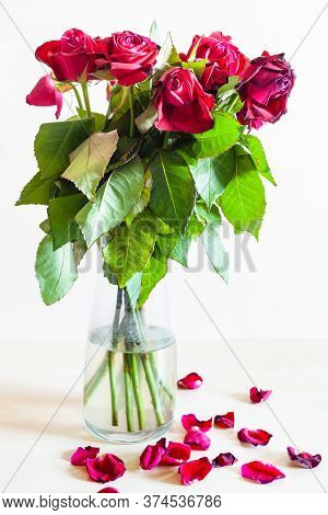Side View Of Bouquet Of Withered Red Rose Flowers In Glass Vase And Fallen Petals On Pale Brown Back