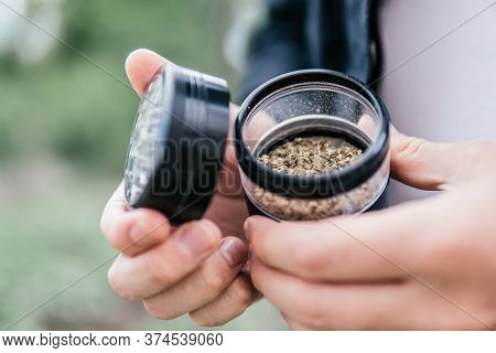 Cannabis Nature Bud. Marijuana Weed Bud And Grinder. Indica Medical Health. The Pot Leaves On Buds.