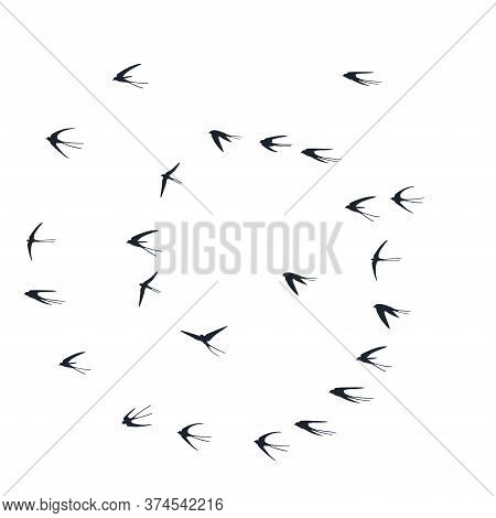 Flying Martlet Birds Silhouettes Vector Illustration. Nomadic Martlets School Isolated On White. Soa