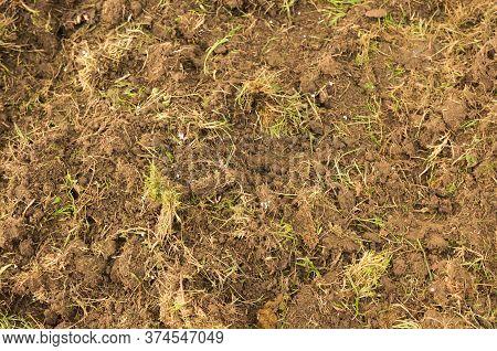 Soil Texture Background. Top View Soil . Dug Soil.